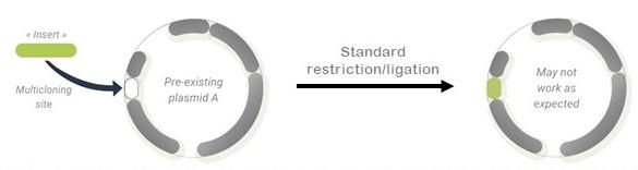 insert restriction ligation