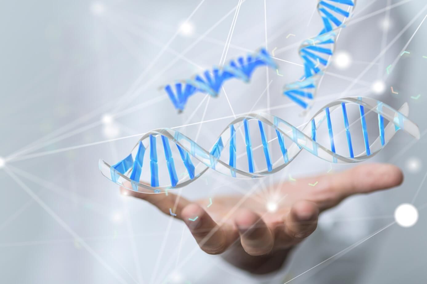 regulation gene expression DNA